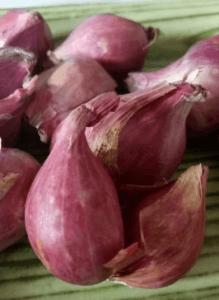 Bawang Merah Cara Alami Untuk Atasi Asma