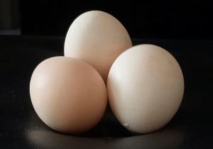 Kenali Gejala Alergi Telur Pada Si Kecil